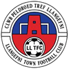 Llangefni Town Football Club